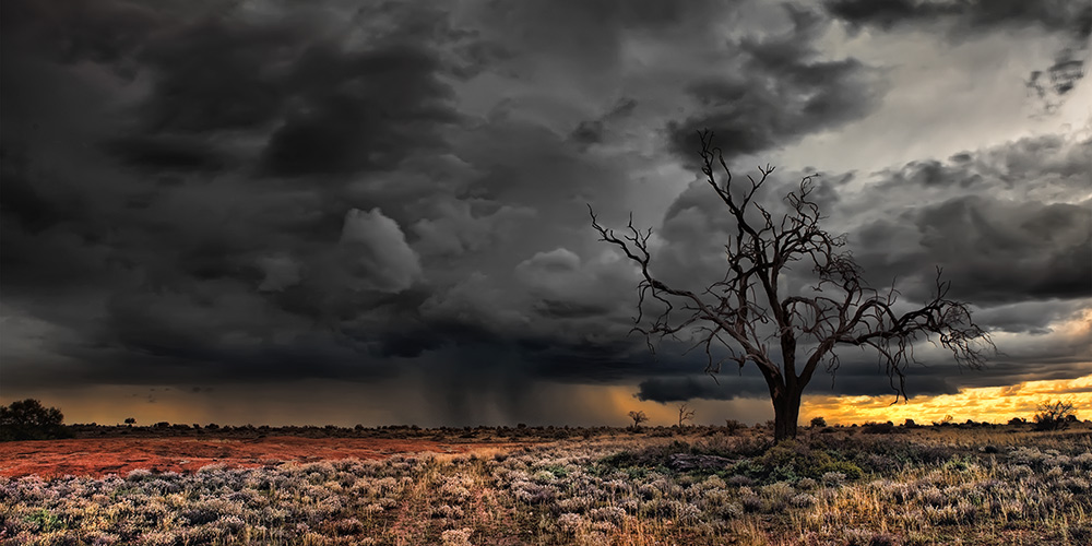 """2013 Nature Section """"Nullarbor Storm"""" by Alan Carmichael: Awarded SSNEP Silver Medal"""