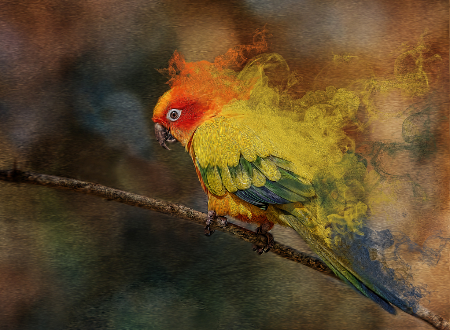 """2017 Creative Section """"Smoking Parrot"""" by Sue Joy: Awarded SSNEP Gold Medal"""